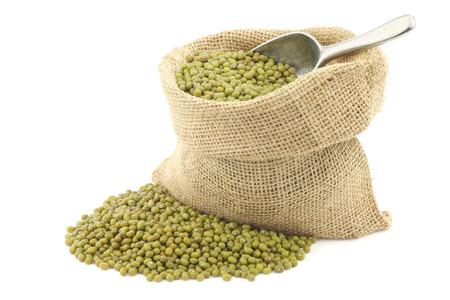radiata: Mungo beans Vigna radiata in a burlap bag on a white background