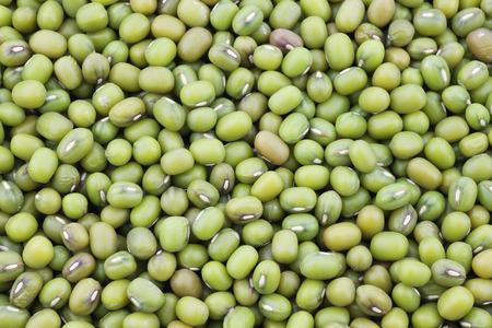 radiata: Mungo beans background Vigna radiata Stock Photo