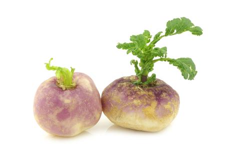 brassica: freshly harvested spring turnips (Brassica rapa) on a white background Stock Photo