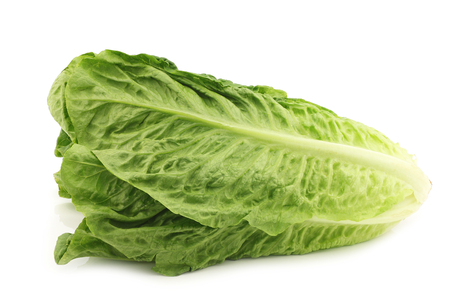 fresh roman lettuce on a white background