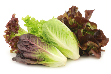 Fresh romaine and red lettuce on a white background Archivio Fotografico
