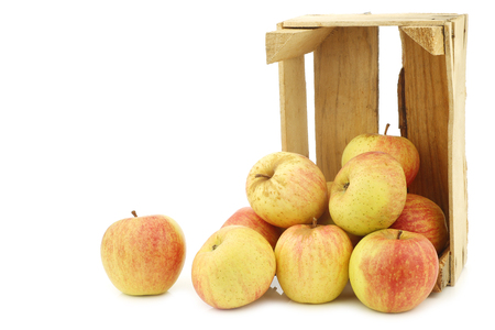 fresh cooking apples in a wooden crate on a white background