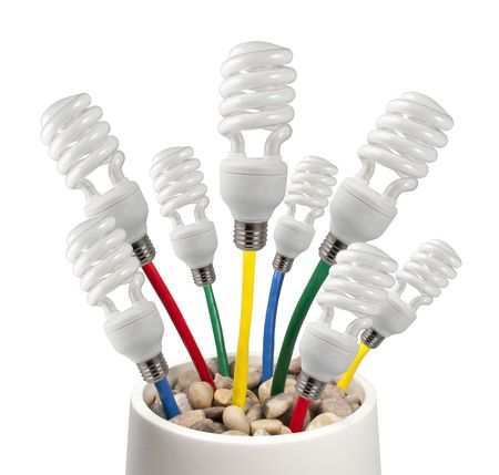 New Bright Ideas - Fluorescent Light Bulbs attached to a colored network cables growing in a pot on a white background photo