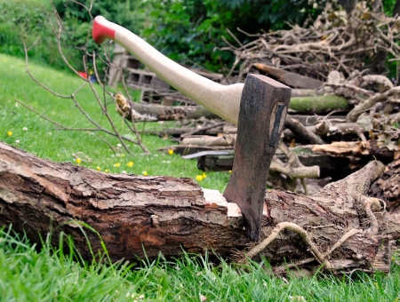 pile of logs: Wood Cutting - Lumberjacks axe stuck in a tree log on green grass with a pile of firewood in the background Stock Photo