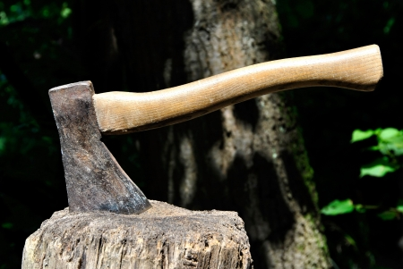Old Lumberjacks axe stuck in a chopping block with natural background Stock Photo
