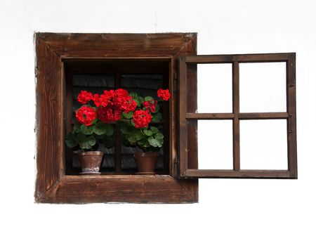 white washed: Opened Traditional Wodden Window with Red Flowers on White Washed Wall