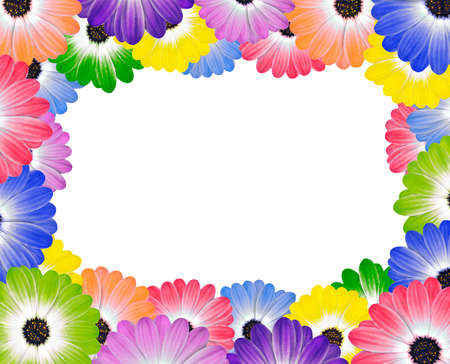 Colorful Various Daisy Flowers Around Edge of Frame  photo