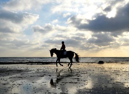 femme et cheval: Silhouette de Cavalier f�minin cheval au galop sur la plage de sable avec la r�flexion du ciel Banque d'images