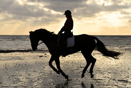 Silhouette of Female Horse Rider Cantering on the Sandy Beach at Sunset photo