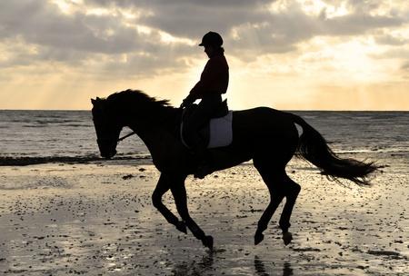 black horse: Silueta de jinete Cantering Mujer en la playa de arena en el Sunset