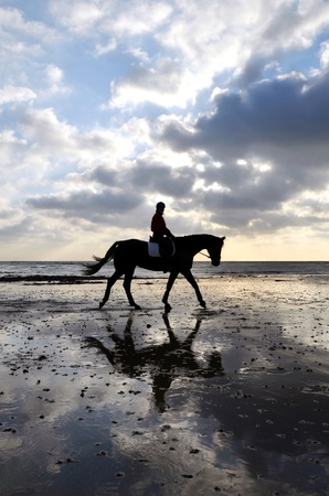 Silhouette of Female Horse Rider Walking on the Sandy Beach with Reflection of the Sky