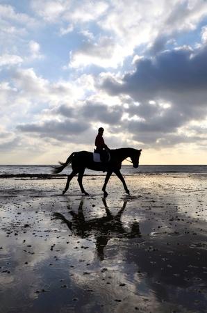 Silhouette de Horse Rider Femme marchant sur la plage de sable avec la réflexion du ciel Banque d'images - 12393299