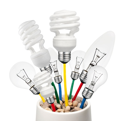 New Ideas - Various Lightbulbs Growing in a Pot Isolated on White Background. Golf Ball, Normal, Candle and Saver type Lightbulbs photo