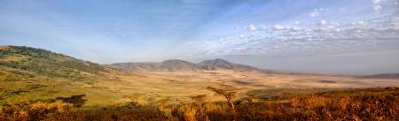 game reserve: Panorama of African Savannah in Serengeti National Park