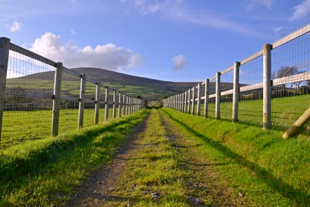 Straight Gravel Road between fenced fields leading toward a gate with a hill and blue sky in the Background photo