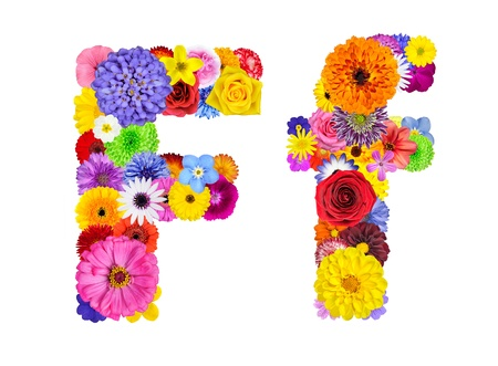consist: Letter F of Flower Alphabet Isolated on White. Letter consist of many colorful and original flowers