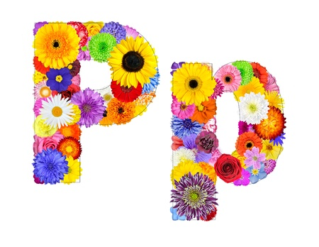 big daisy: Letter P of Flower Alphabet Isolated on White. Letter consist of many colorful and original flowers Stock Photo