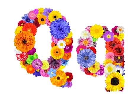 Letter Q of Flower Alphabet Isolated on White. Letter consist of many colorful and original flowers photo