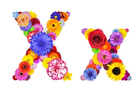 Letter X of Flower Alphabet Isolated on White. Letter consist of many colorful and original flowers photo
