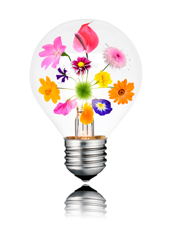 green house effect: Light Bulb with Various Colorful Flowers Growing Inside from Center to the Edges. Isolated White Background. Light bulb has a reflection