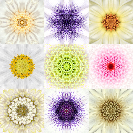 concentric: Collection of Nine White Concentric Flower Mandalas. Kaleidoscope Concentric design. Full Flower Background