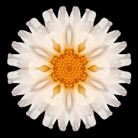 白い花曼荼羅。万華鏡のようなデザインの黒背景に分離されました。パターンのミラー化 写真素材