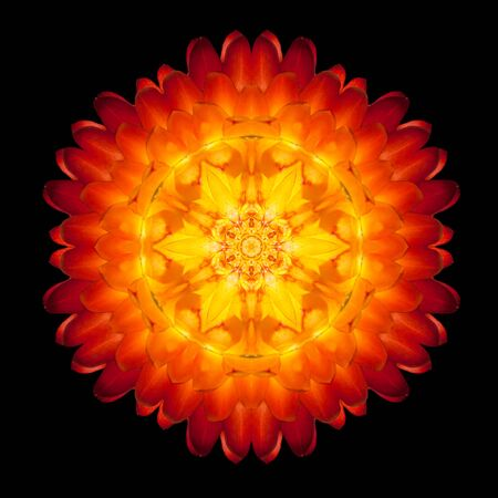 Red Flower Mandala. Kaleidoscopic design Isolated on Black Background. Mirrored pattern