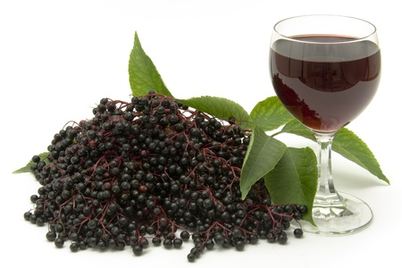must: A twig with elderberries, a leaf and a glass with must depicted on a white background. Stock Photo