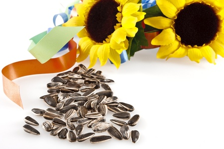 sunflower seeds: Sunflower seeds and two sunflowers with colored ribbons on a white background into.