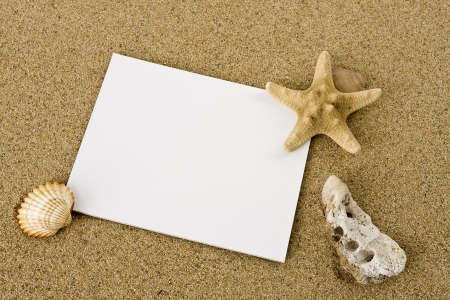 A blank piece of paper, a shell and a starfish lying on the sand at the beach.
