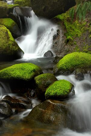 A peaceful waterfall among mossy rocks located in the wilderness of Oregon Stock fotó