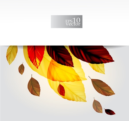 Autumn leaves design