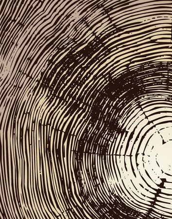 wallpaper rings: Wood cross section background