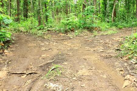 mud slide: The decision