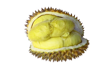 Durian,favorite fruit of everyone Stock Photo - 9918868