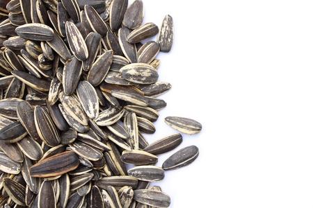 semillas de girasol: Semillas de girasol sobre fondo blanco