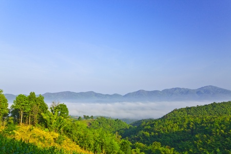 Sea of fog among the valley,Namprao village,Thailand photo