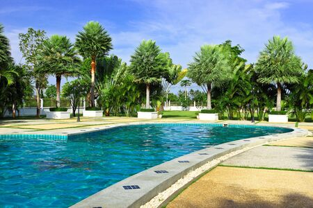 restfulness: Swimming pool and palm garden Stock Photo