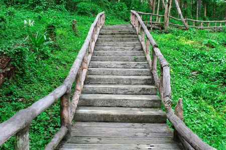 wilding: The staircase to the wilding upper
