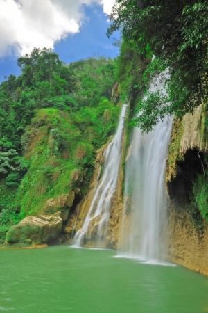 wilding: T Lor Su waterfall,Um Phang,Tak,Thailand