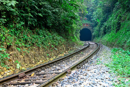wilding: Go into the tunnel,journey with railway