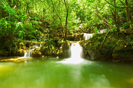 wilding: Small waterfall in Um Phang forest,Tak,Thailand Stock Photo