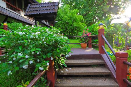 boutique hotel: Escalera y jard�n de flores con hotel boutique en la ma�ana
