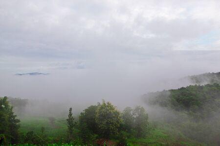 wilding: Low level cloud at Nam Prao valley,Phrae,Thailand Stock Photo