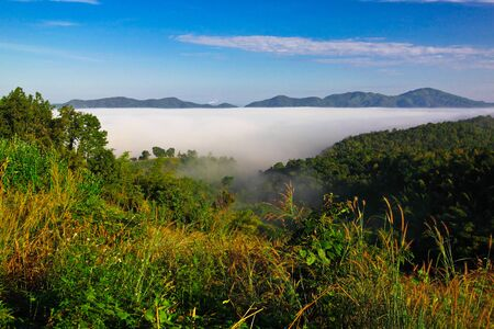 wilding: Low level cloud at NamPrao valley,Phrae,Thailand Stock Photo