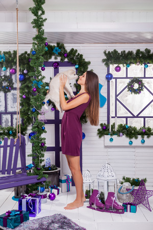 merrymaking: leggy brunette in a burgundy dress sitting on a purple rug on the terrace surrounded by a Christmas tree with baubles and gifts and playing with puppies Husky smiling and looking at the camera. Stock Photo