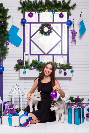 merrymaking: beautiful brunette in a black dress playing on the terrace with puppies Husky, close to the Christmas tree and gifts Stock Photo