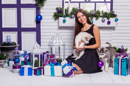 merrymaking: beautiful brunette in a black dress playing on the terrace with puppies Husky, close to the Christmas tree and gifts.