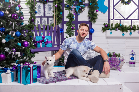 hogmanay: beautiful man sitting on a terrace next to a Christmas with a Christmas tree and toys and plays with puppies Husky.