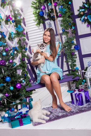 merrymaking: beautiful girl in a turquoise dress sitting on a swing next to a Christmas tree, toys and gifts, is holding husky puppies, smiling and looking at the camera. Stock Photo
